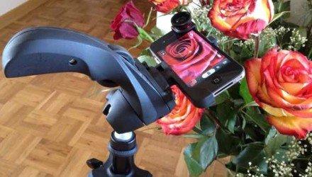 Fotoexperiment «Makro-Aufnahmen» mit dem iPhone