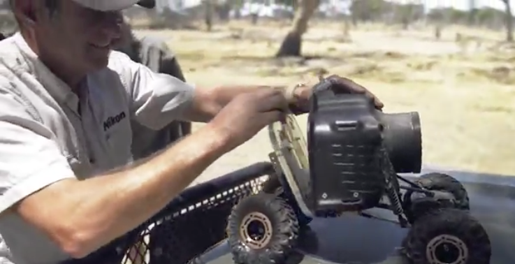 Video – Wie macht man am besten Nahaufnahmen von wilden Tieren – mir einem R/C Auto