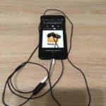 Kopfhörer angeschlossen mit dem Adapter