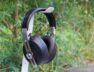 Edler Kopfhörer mit tollem Sound