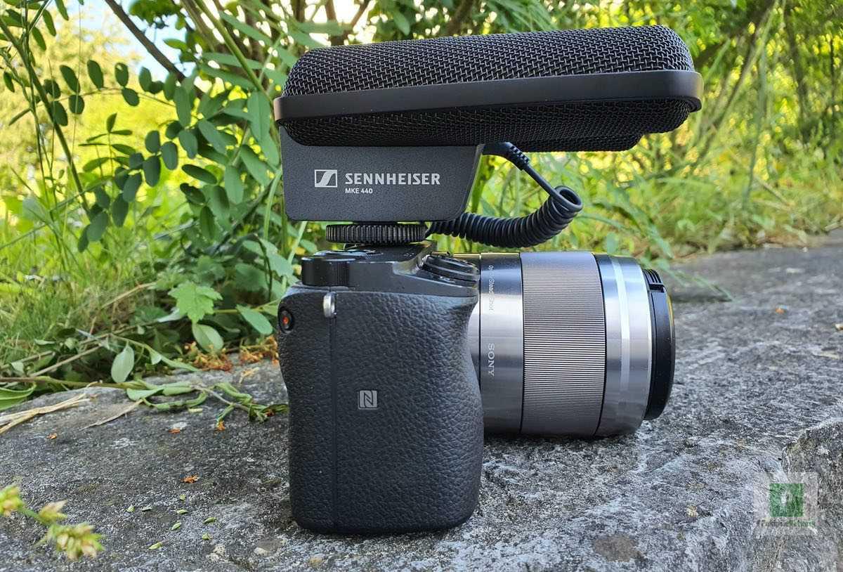 Sennheiser MKE 440 im Test – Stereo Sound zum Aufstecken