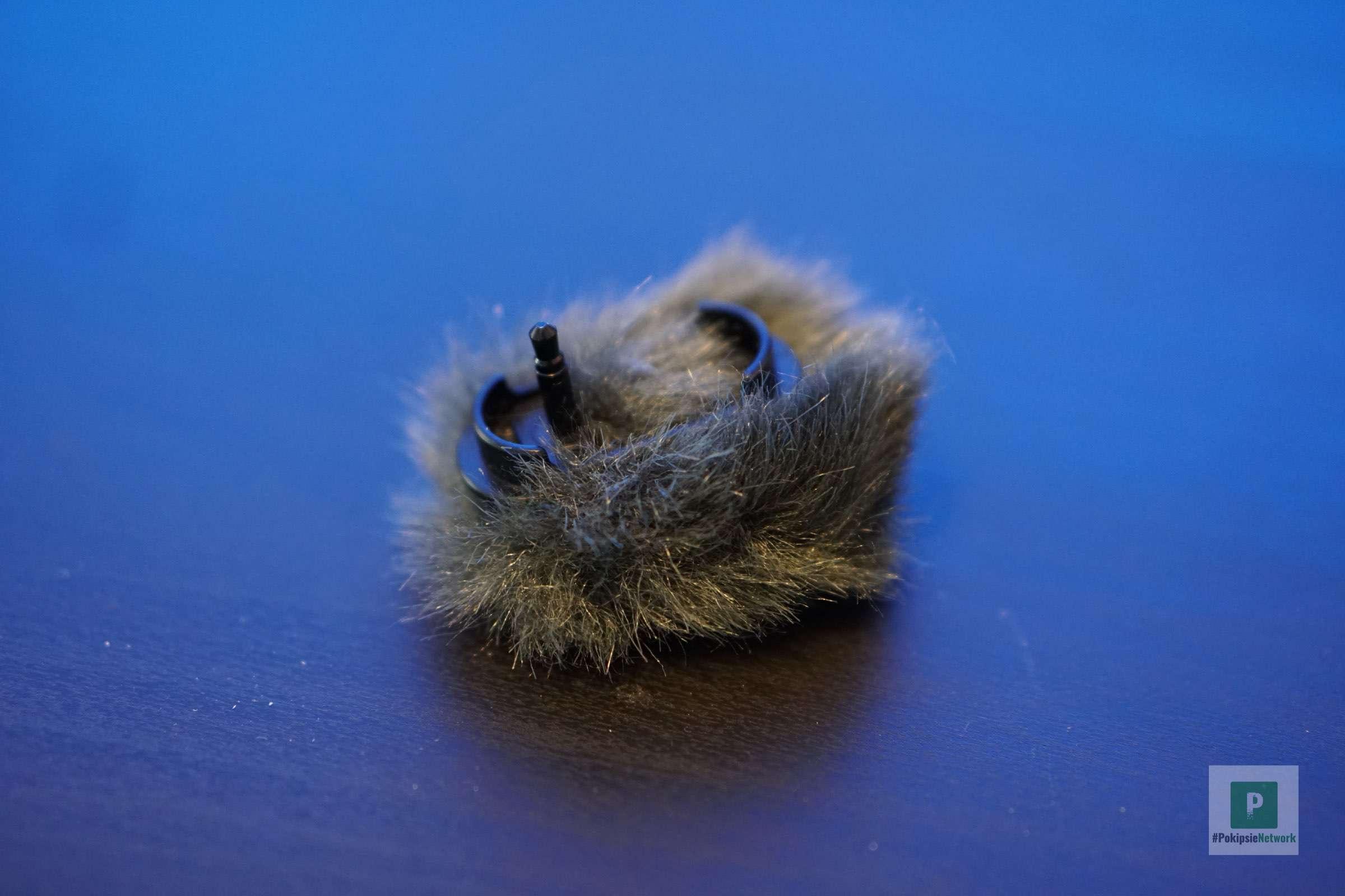 Tote Katze mit Klinken-Stecker